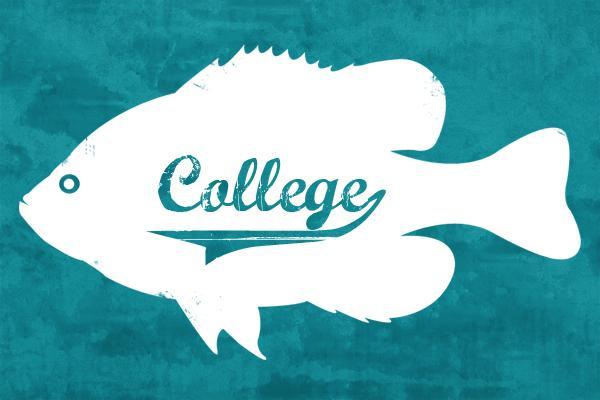 college fish