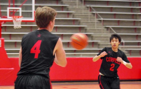 Young season promising for guard-heavy team