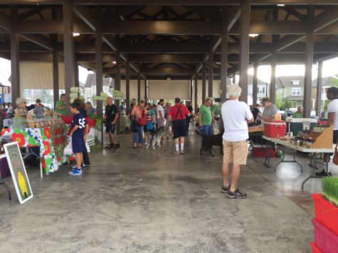 Coppell Farmers Market broadens Cummins' perspective