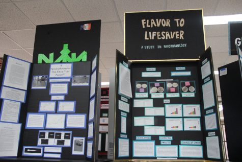 2017 CHS Science Fair results released, include over 60 underclassmen winners