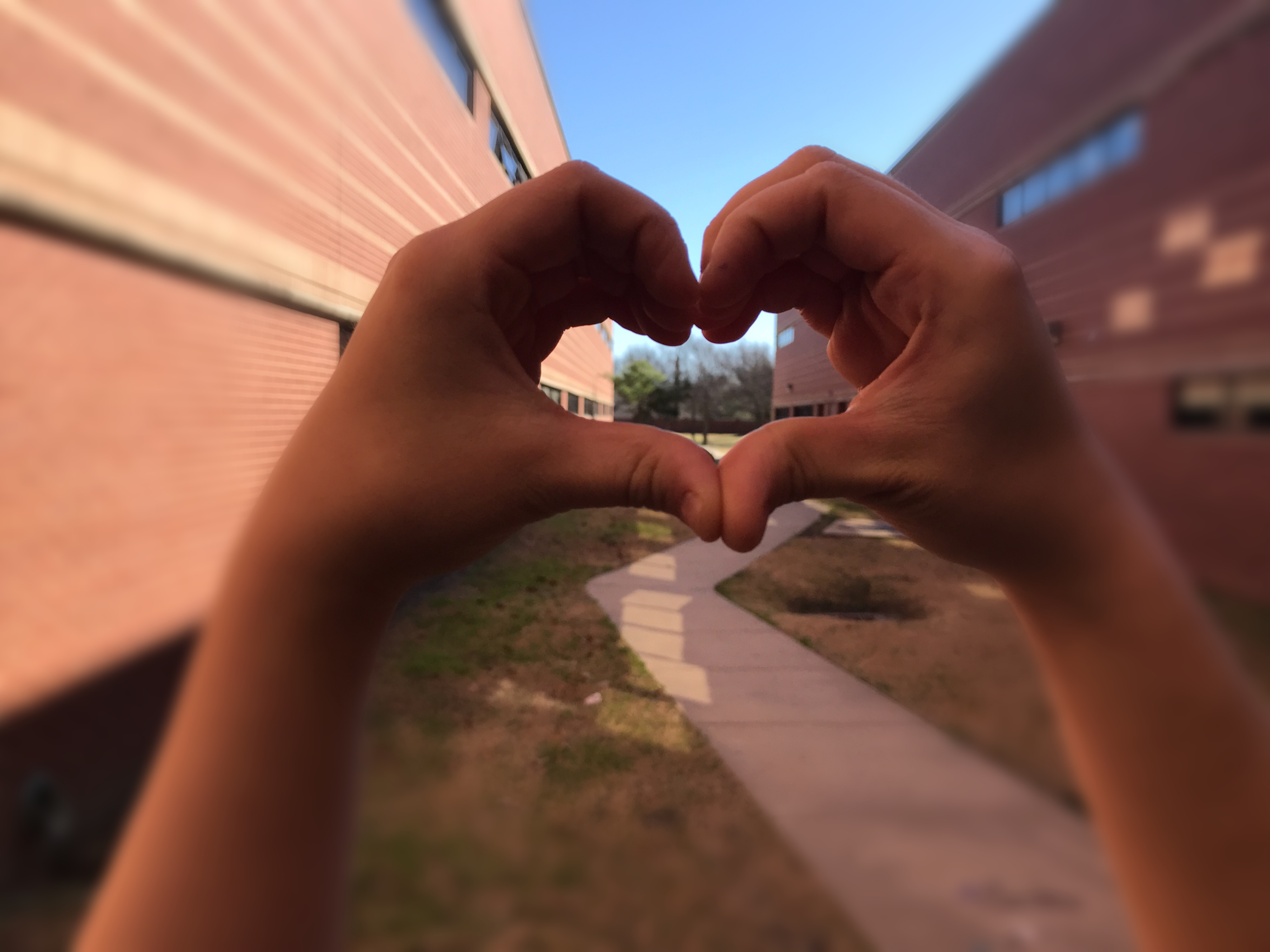 A large number of high school students struggle with fitting in and self-love. Accepting yourself for who you are is important and finding who your true friends are will help you build yourself up. Photo by Megan Winkle.
