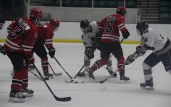 Hockey's road to state ends short with defeat by McKinney