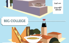 College Series: Simple recipes to make transition easier