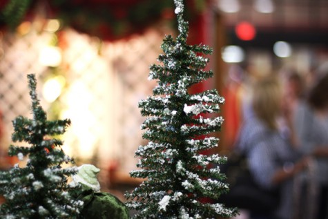 Photo Gallery: Holiday House 2011