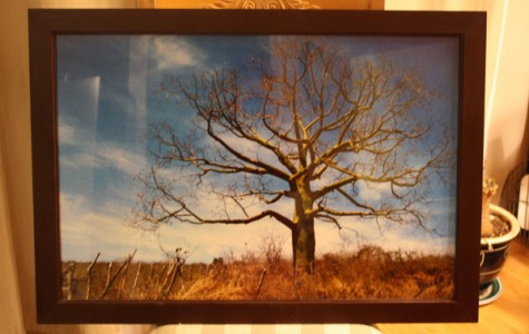 New Tech@Coppell's Hope for Africa club to host art auction