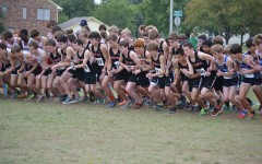 Cross Country finishes season strong at District Meet, Vickroy qualifies for Region I