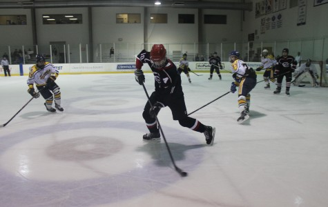 Coppell hockey off to a quick start to the 2015 season