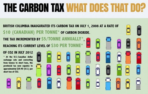 Big environment or big business?