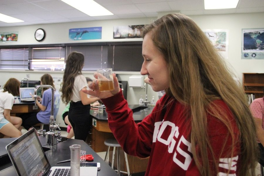 "Coppell High School senior Amanda Underwood carefully examines her sample of wastewater n Holly Anderson's AP Environmental Science class on Friday. AP Environmental Science is currently working on a ""Wastewater Treatment Lab"" with the intention of cleaning a sample of wastewater."