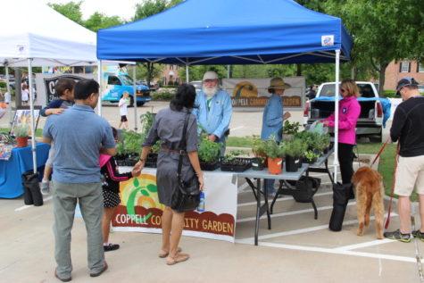 EarthFest to bring environmental awareness, spring fun