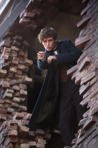 Fantastic Beasts and Where to Find Them captivates Harry Potter lovers