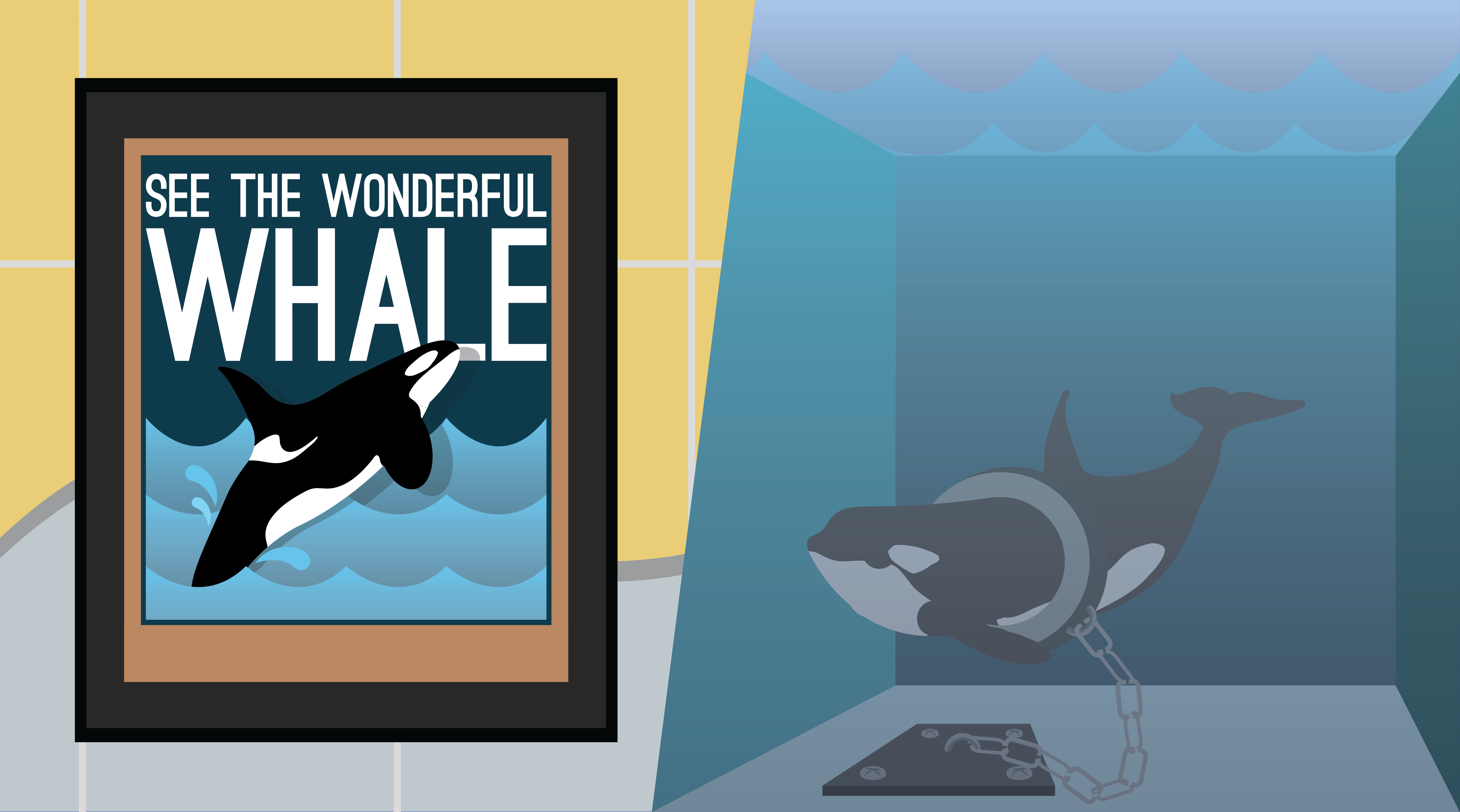 whales in captivity essay Blackfish - orcas in captivity the documentary blackfish, directed by gabriela cowperthwaite brings to light the many issues that involve orcas being held in captivity at certain aquatic parks such as seaworld as well as others.