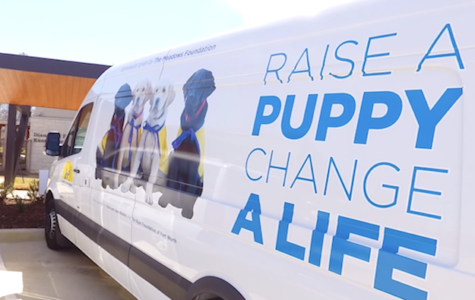 Canine Companions for Independence provides service dogs
