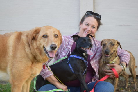 Keeping pets off the ruff streets: How Roadtrip 4 Paws travels cross-country to save lives