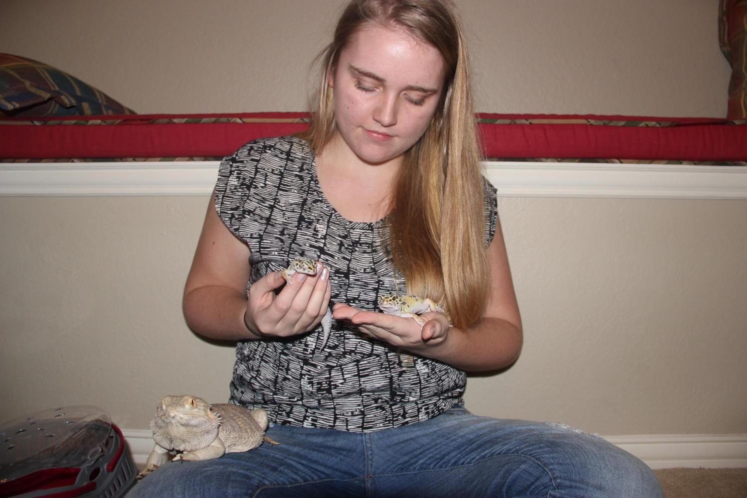 Coppell High School senior Lara Collins holds her two Leopard Geckos, Willow and Delilah, and her Bearded Dragon, Dartan on May 1. Collins' passion for animals has inspired her to take a gap year to travel through Europe and Australia to gain experience with animals for her future career in Captive Wildlife Care.