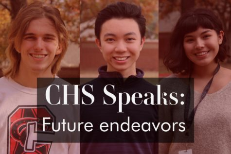 Ranging from freshmen to seniors, many students have interests and ambitions that push them forward. Coppell High School students share their interests and how they play into their plans for the future.