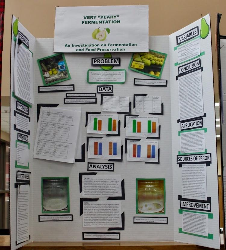 Coppell High School student Shivi Sharma won second place in the Biochemistry division for this years science fair. These projects are displayed this week in the library while students are waiting to compete at state.