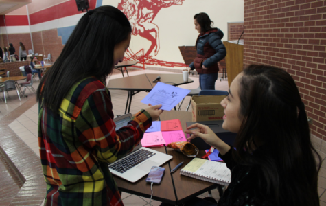 On the Spot: CHS shows its love through carnation fundraiser