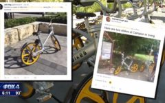 Dallas bikes clutter the streets