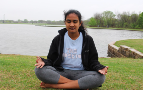 Searching for enlightenment, finding peace through meditation (with video)