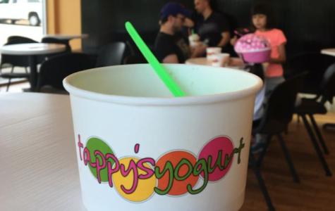 Best Dessert: Tappy's Yogurt