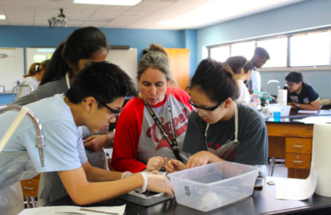 Biology honors/GT teacher Cathy Douglas guides students as they work on a pig dissection. Douglas recently won a 2018 Southern Methodist University Teacher Award. At the Dallas Regional Science and Engineering Fair at SMU on April 4.