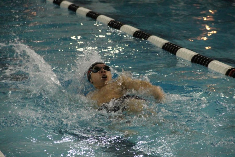Coppell junior Ivan Lau swims in the 50-yard backstroke during the first intrasquad meet of last season at the Coppell YMCA on Nov. 13. The Coppell swim team competes at the Dragon Hunt Invitational meet held in the Southlake Natatorium at 10 a.m. tomorrow.