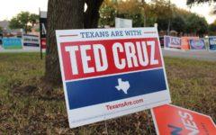 'Tough as Texas', Cruz keeps Texas red