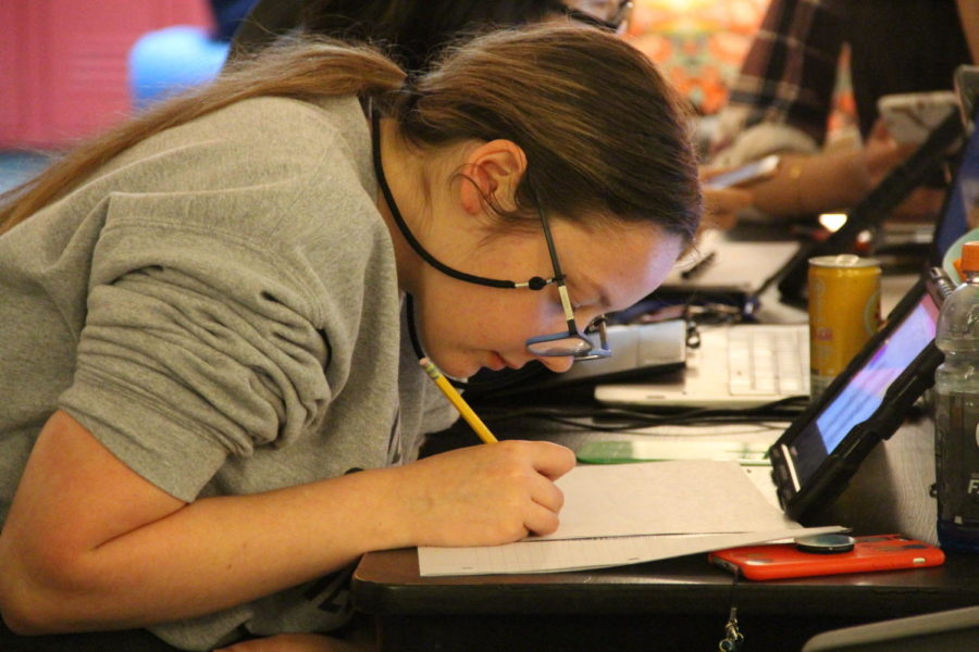 Coppell High School junior Bailey Baskett draws for her visual argument project in Melissa Alexander-Blythe's GT/AP English III class in third period. For the 2019-2020 school year, the Coppell High School administration will no longer offer Gifted and Talented Advanced Placement (GT/AP) courses.