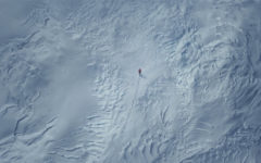Arctic: A simple survivor film