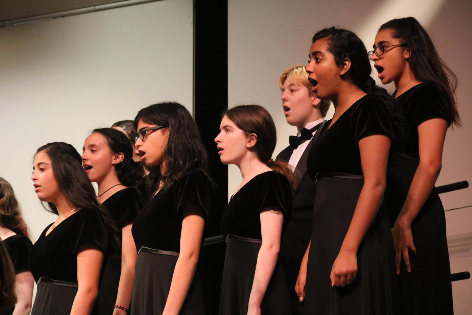 Chorale Choir performs at the Choir Fall Concert on Tuesday at CHS Auditorium. This annual concert showcases all the variant choirs including Madrigals, Treble, Tenor Bass, Chorale, Kantorei and A Cappella.