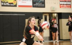 Bobcats too much in playoff match