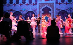 "Ballet Ensemble of Texas highlights unity, hard work in spellbinding performance of ""The Nutcracker"""