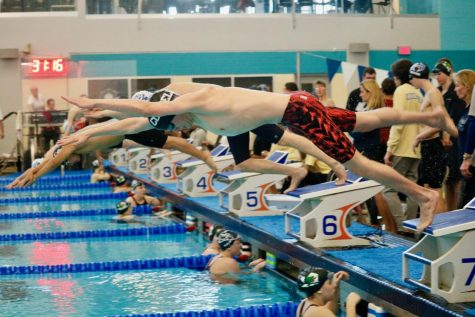 Two school records smashed in district swim meet