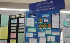IB Biology students advance 31 projects to regional Science Fair