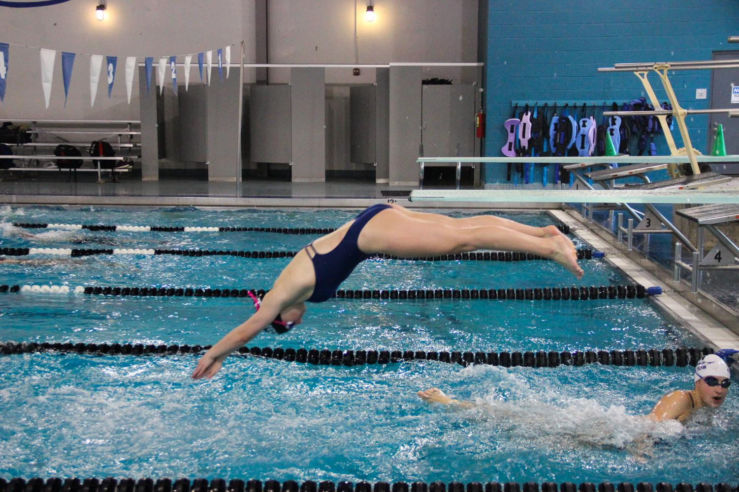 New Tech High @ Coppell senior AnaMarija Radicic dives at practice at the Coppell YMCA on Jan. 24. Coming from Croatia after living there for nine years, Radicic adjusted to her new environment and is now a captain of the varsity swim team.