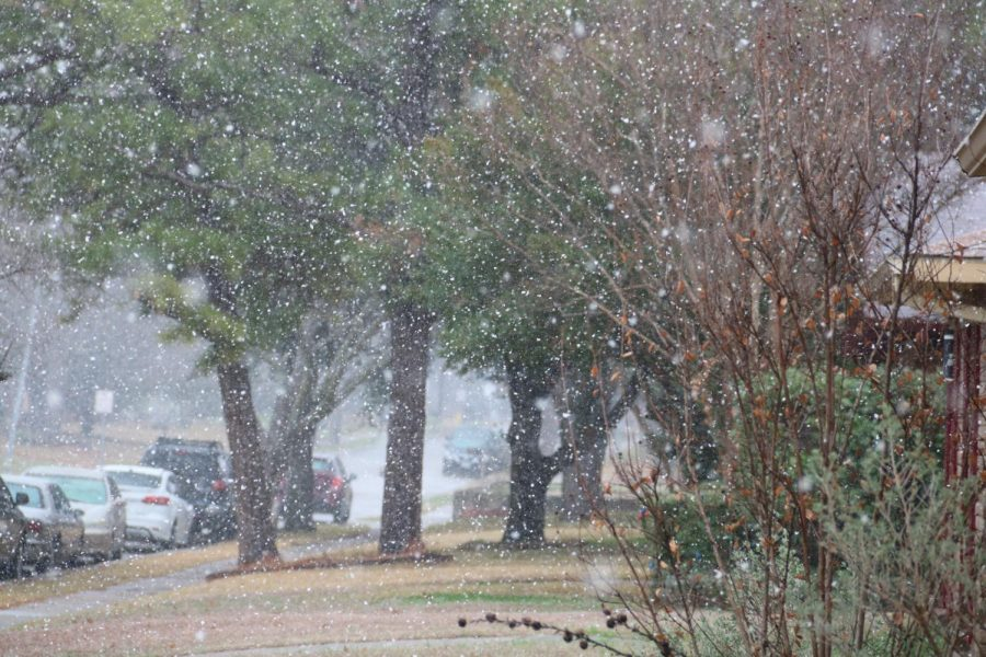 Residents of Shadowcrest Lane in Coppell witnessed snowfall on Saturday morning. The city experienced light snowfall following a night of severe weather warnings.