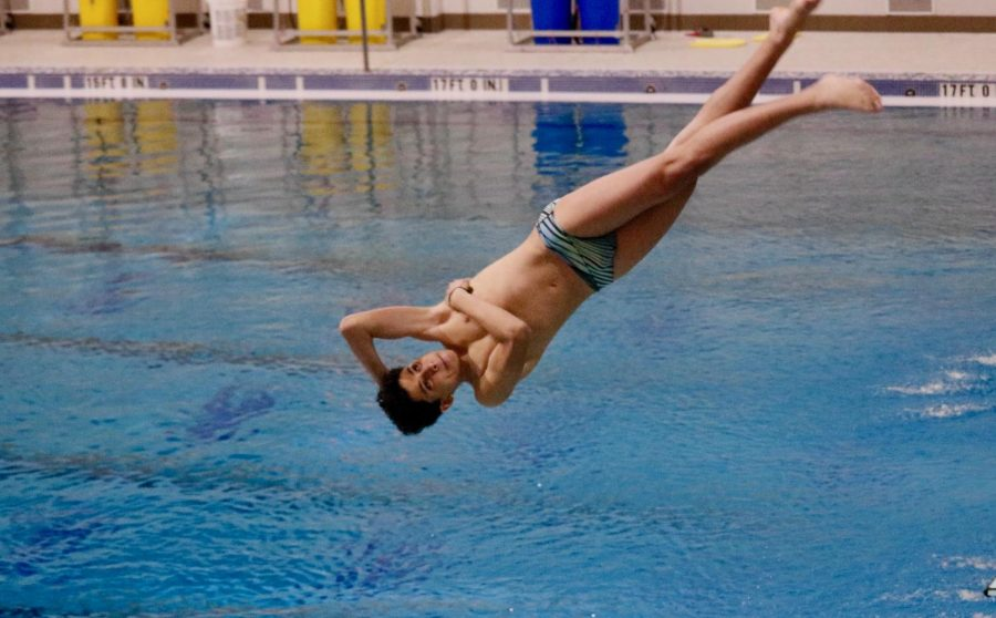 Coppell sophomore diver Yassin Helaly flips into the Dedman Center for Lifetime Sports pool on March 2. Helaly moved to the United States last year in pursuit of a diving scholarship.