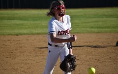 Final tournament win propels softball into district season