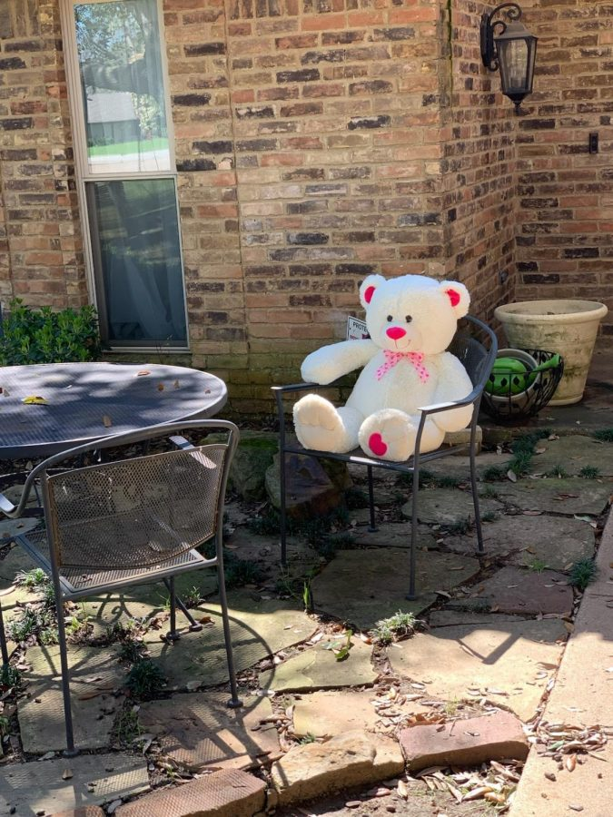 Coppell+resident+Karen+Williams+puts+a+bear+near+the+front+door+for+the+community+Bear+Hunt.+The+challenge+brings+positivity+to+Coppell+residents+during+the+spread+of+the+COVID-19+virus.