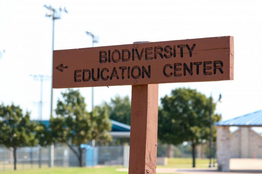 Biodiversity Education Center prevails despite COVID-19 challenges by remodeling programs