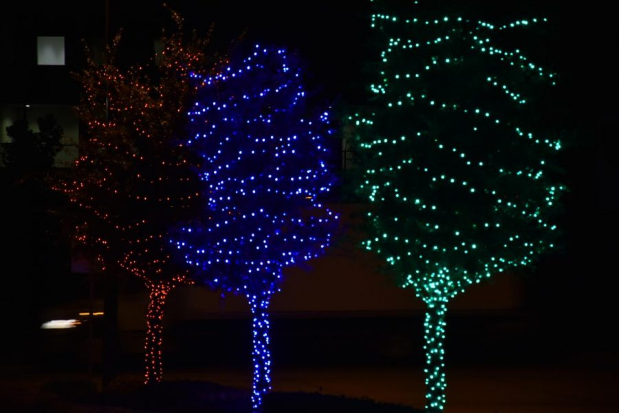 Coppell's Parkside neighborhood is illuminated with string lights around trees for the holiday season on Wednesday. Despite COVID-19 this holiday season, residents are keeping the holiday spirit alive.