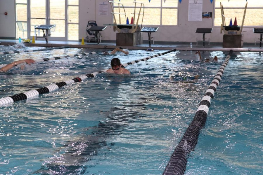 Coppell junior Scott Moyer swims a 50-yard backstroke during practice on Dec. 17 at the Coppell YMCA. Scott and his brothers, juniors Jack and Luke, all participate in Coppell athletics.