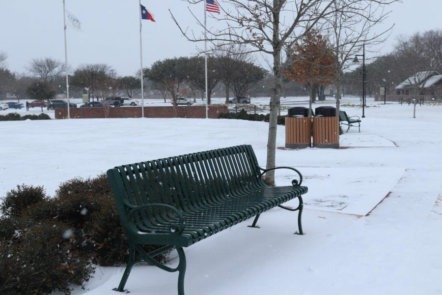 Snow falls at Andy Brown Park East today. Coppell experienced snowfall on Sunday, and there is a winter storm warning for the Dallas-Fort Worth area as per the National Weather Service.