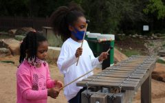 Coppell residents Narisa and Nyra James play the xylophone in the music and movement area of the Biodiversity Education Center during EarthFest on Saturday. EarthFest is an annual family-friendly event hosted by the City of Coppell to provide a platform for environmental education.