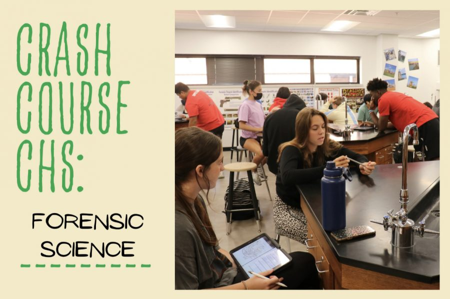 Coppell High School forensic science students work to solve a mystery lab in seventh period on Thursday. Sandy Larson has been teaching forensic science for five years.